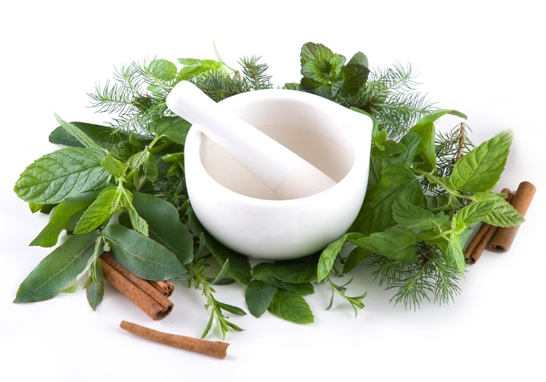 10-Awesome-Healing-Herbs-You-Can-Use-Daily-Life
